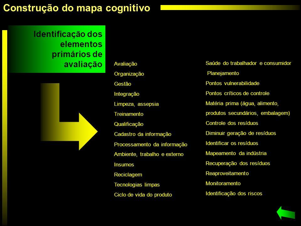 Construção do mapa cognitivo