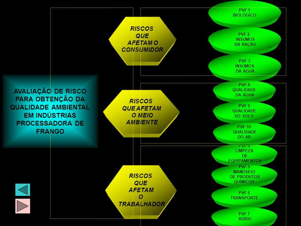 AVALIAÇÃO DE RISCO PARA OBTENÇÃO DA QUALIDADE AMBIENTAL EM INDÚSTRIAS