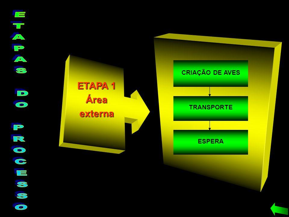 ETAPAS DO PROCESSO ETAPA 1 Área externa CRIAÇÃO DE AVES TRANSPORTE