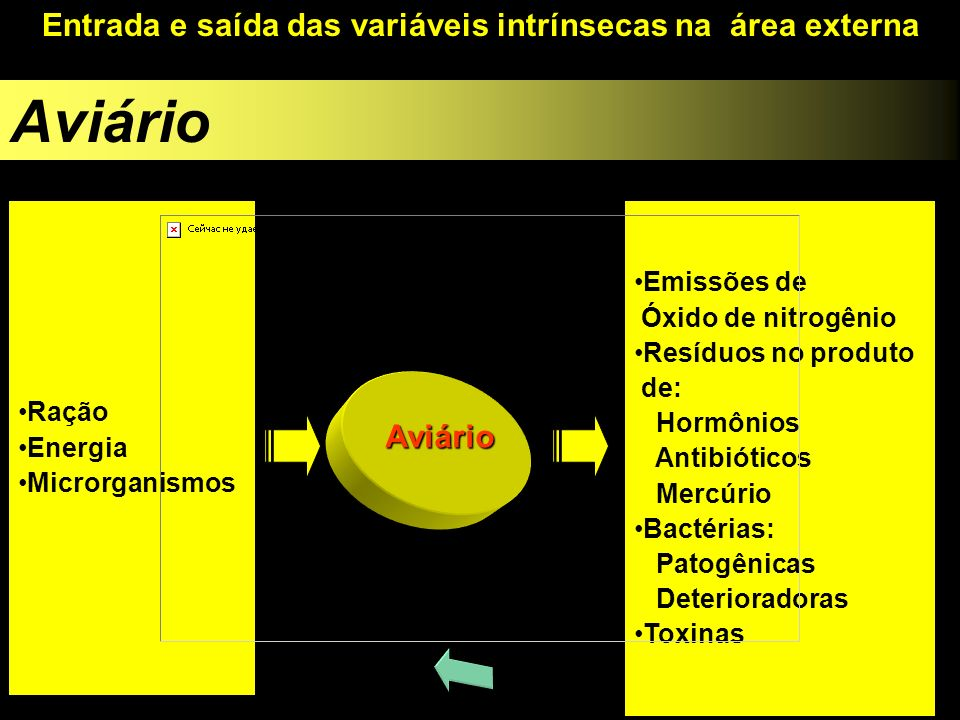 Aviário Entrada e saída das variáveis intrínsecas na área externa