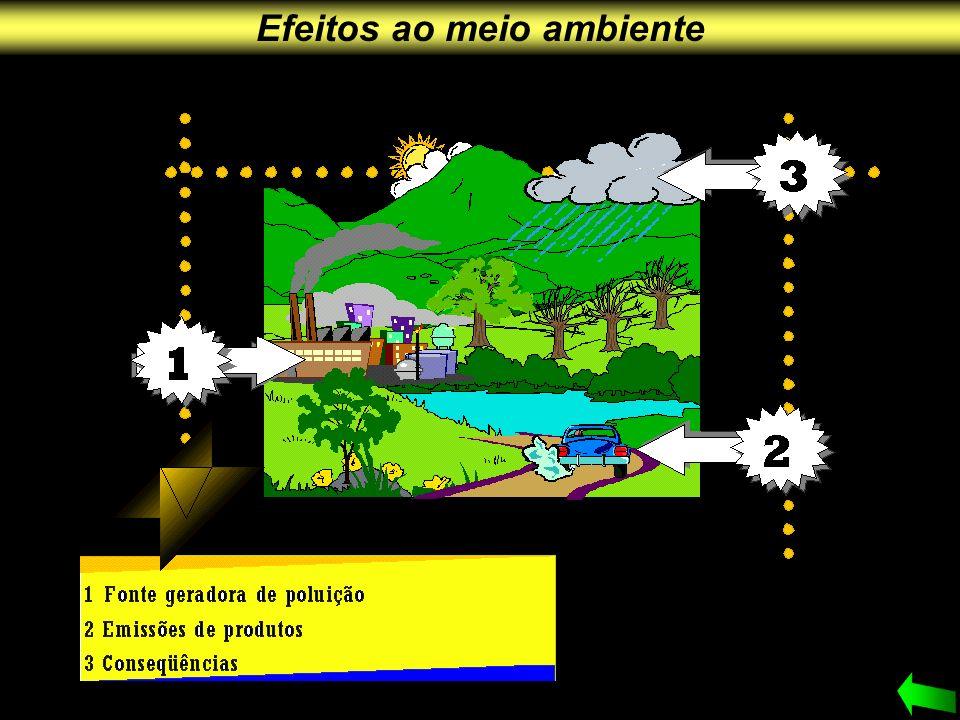 Efeitos ao meio ambiente