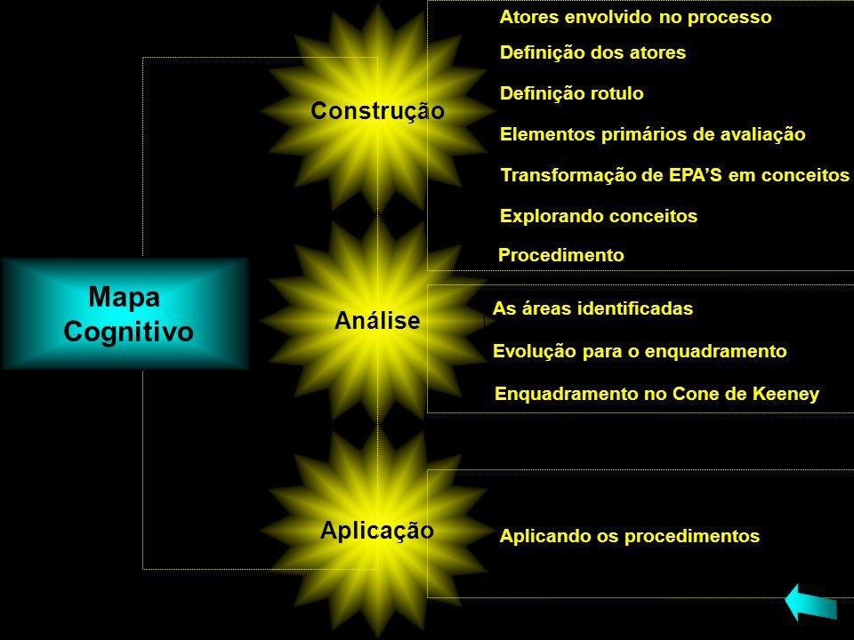 Mapa Cognitivo Construção Análise Aplicação