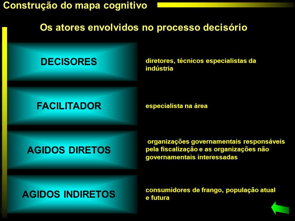 DECISORES FACILITADOR AGIDOS DIRETOS AGIDOS INDIRETOS
