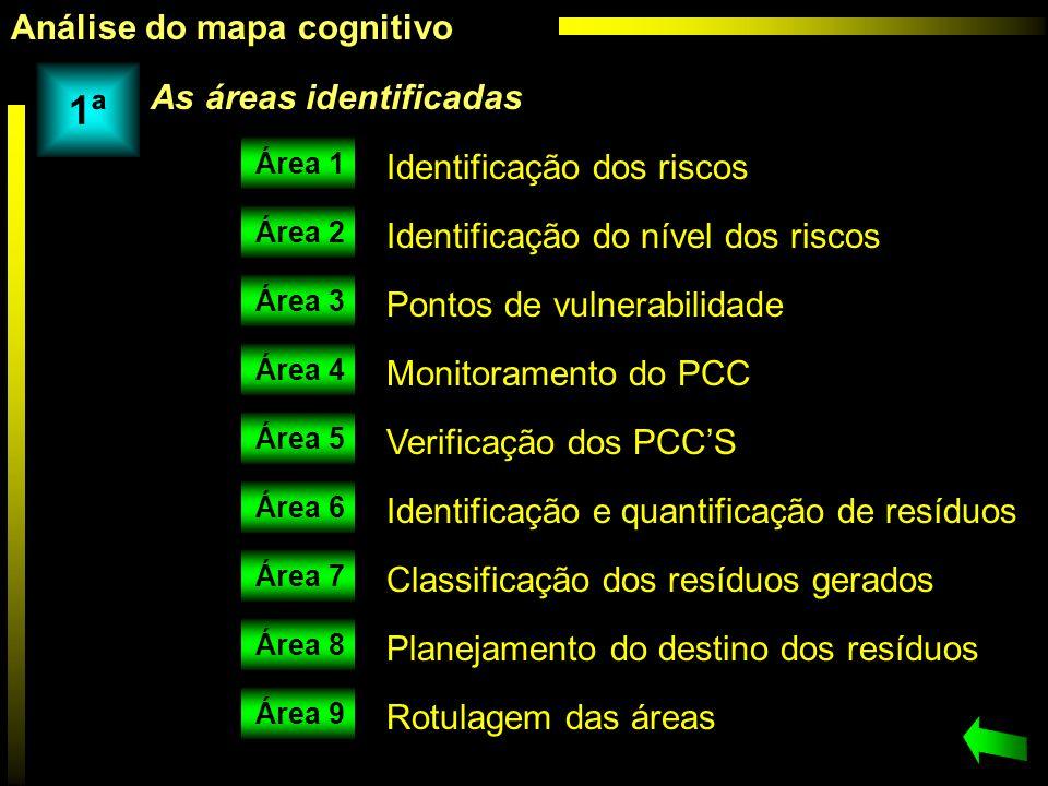 1ª Análise do mapa cognitivo As áreas identificadas