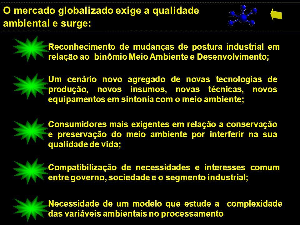 O mercado globalizado exige a qualidade ambiental e surge: