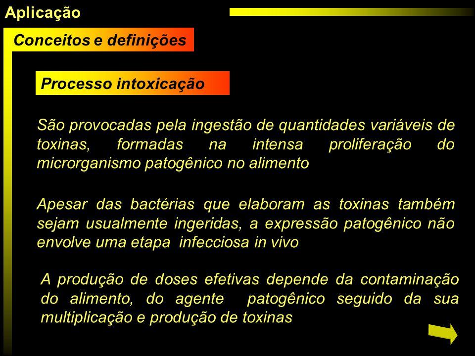 Aplicação Conceitos e definições. Processo intoxicação.