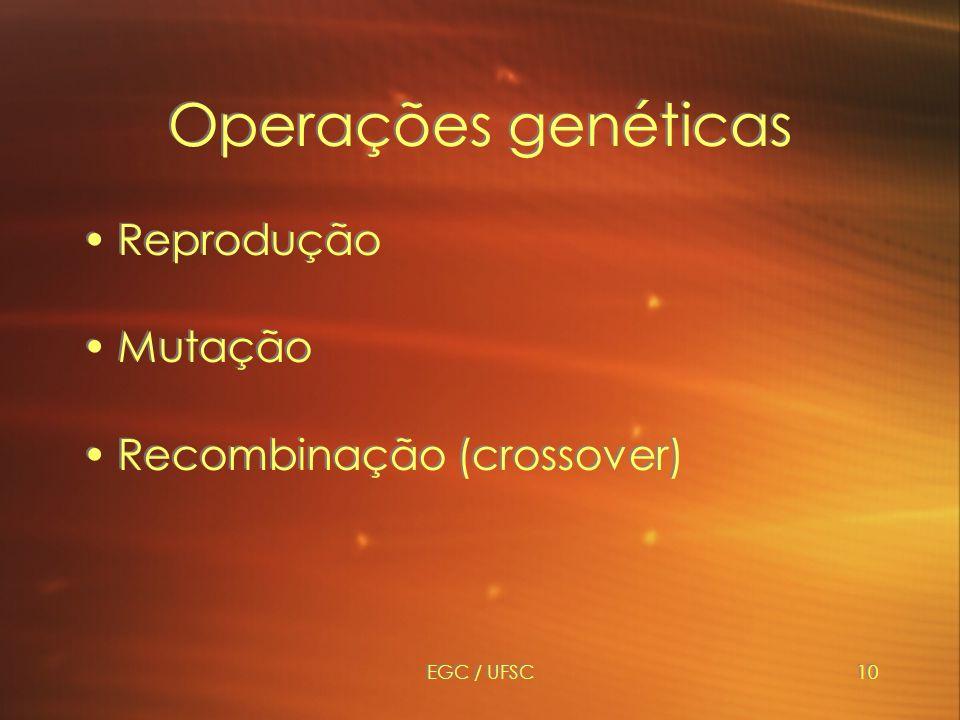 Operações genéticas Reprodução Mutação Recombinação (crossover)