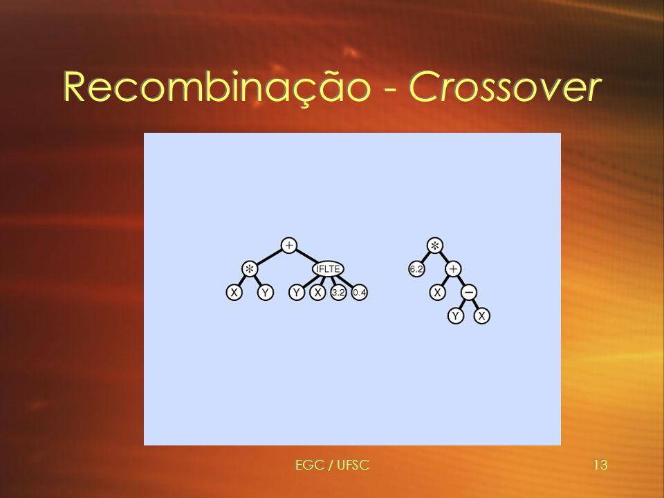 Recombinação - Crossover