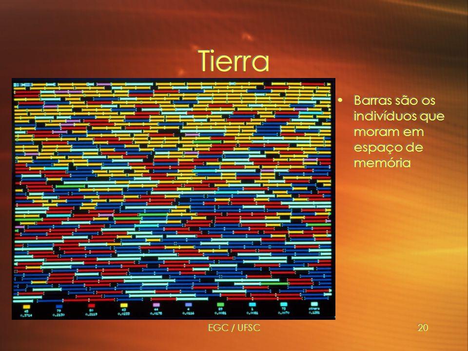 Tierra Barras são os indivíduos que moram em espaço de memória