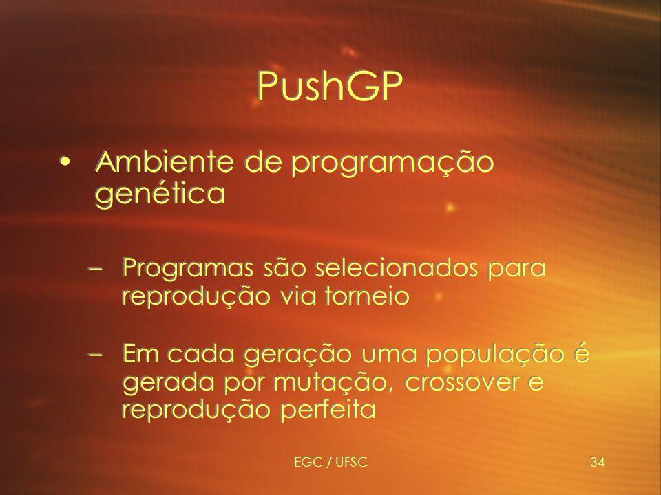 PushGP Ambiente de programação genética