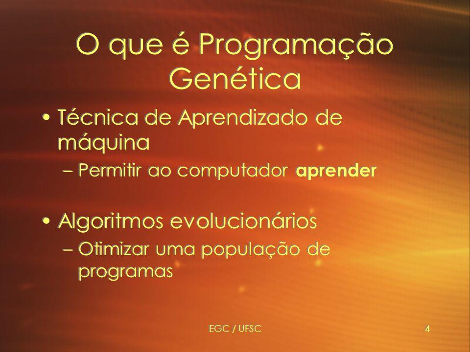 O que é Programação Genética