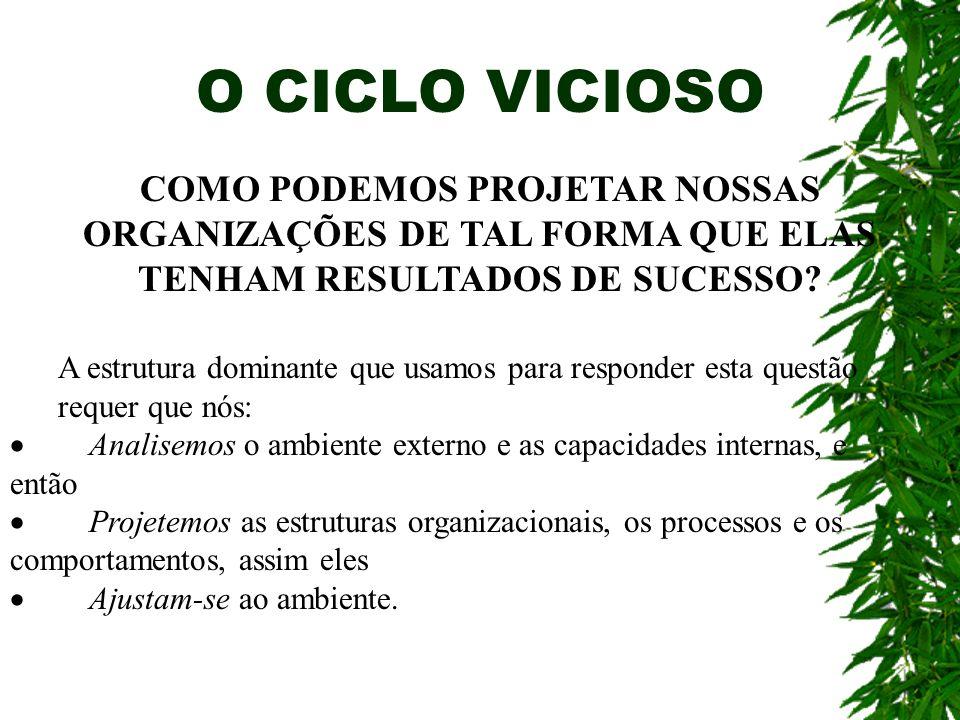 O CICLO VICIOSO COMO PODEMOS PROJETAR NOSSAS ORGANIZAÇÕES DE TAL FORMA QUE ELAS TENHAM RESULTADOS DE SUCESSO
