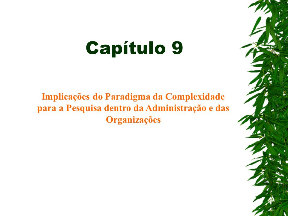 Capítulo 9 Implicações do Paradigma da Complexidade para a Pesquisa dentro da Administração e das Organizações.