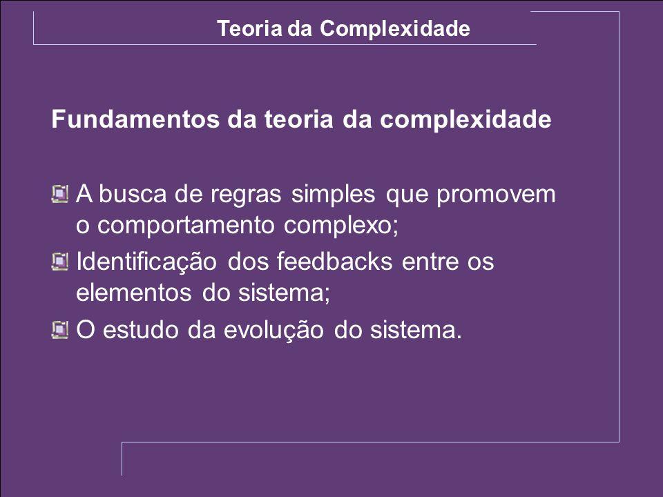 Fundamentos da teoria da complexidade