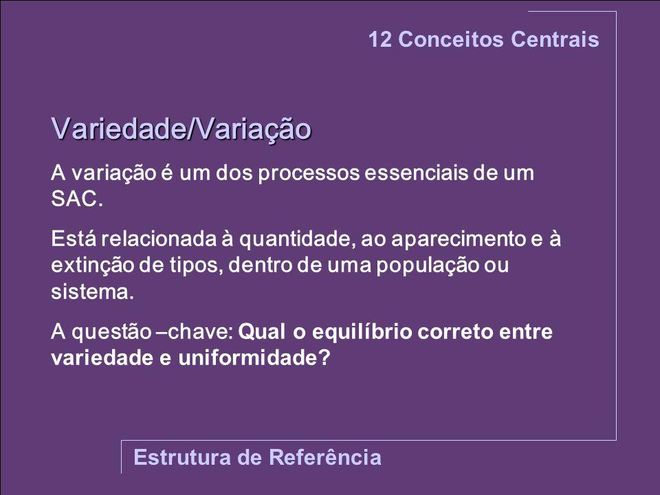 Variedade/Variação 12 Conceitos Centrais