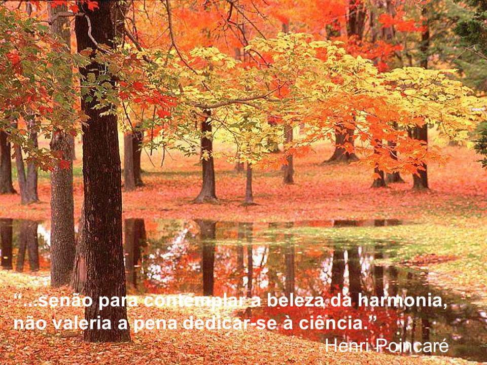 ...senão para contemplar a beleza da harmonia, não valeria a pena dedicar-se à ciência. Henri Poincaré