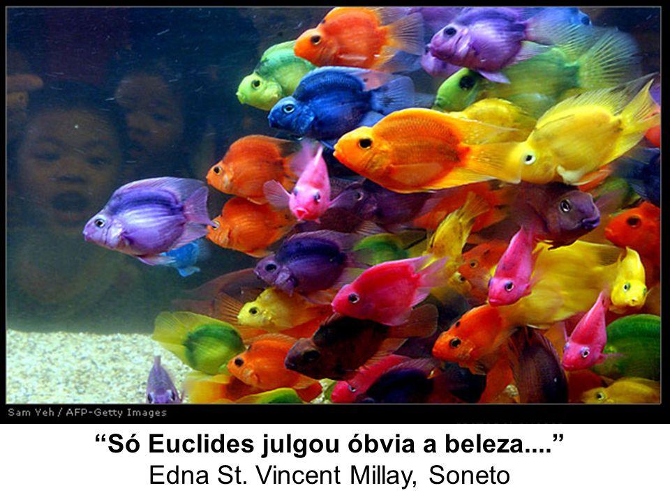 Só Euclides julgou óbvia a beleza....