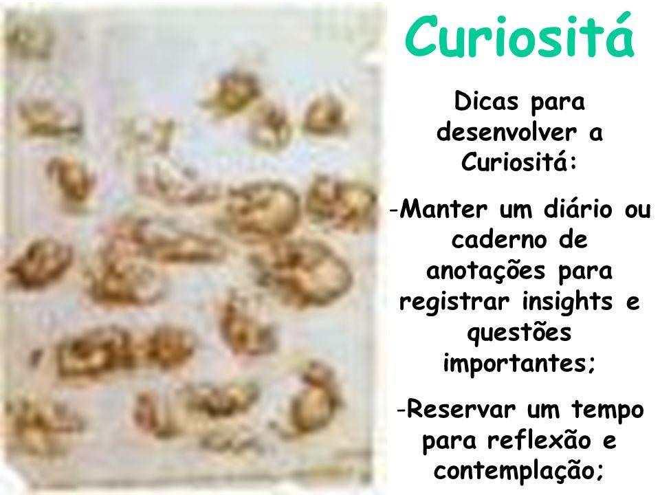 Curiositá Dicas para desenvolver a Curiositá: