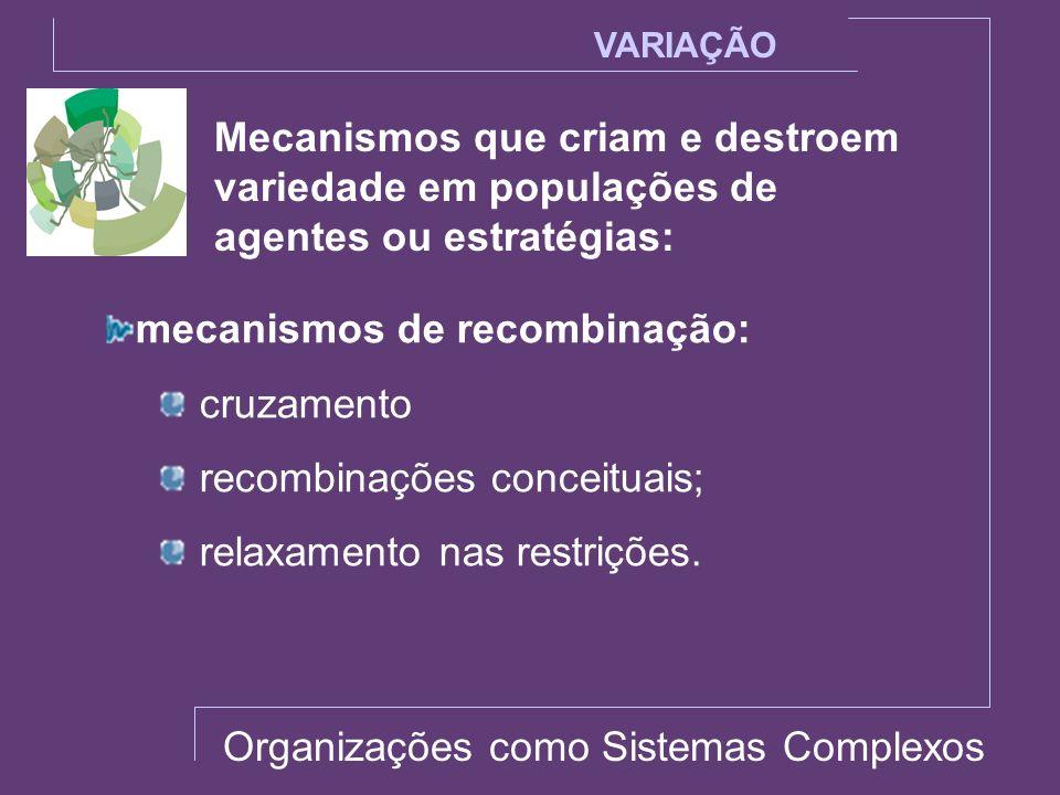 mecanismos de recombinação: cruzamento recombinações conceituais;