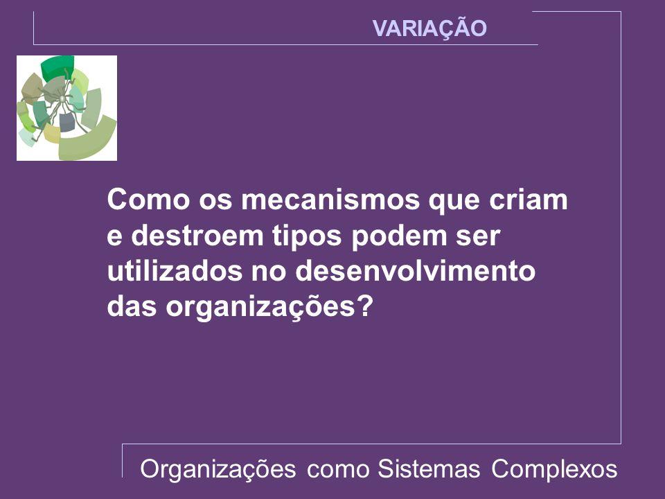 VARIAÇÃO Como os mecanismos que criam e destroem tipos podem ser utilizados no desenvolvimento das organizações