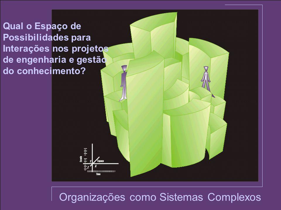 Organizações como Sistemas Complexos