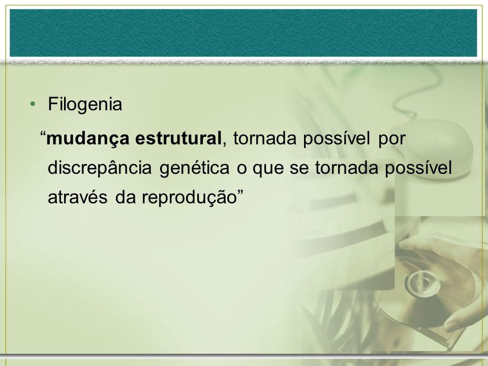Filogenia mudança estrutural, tornada possível por discrepância genética o que se tornada possível através da reprodução