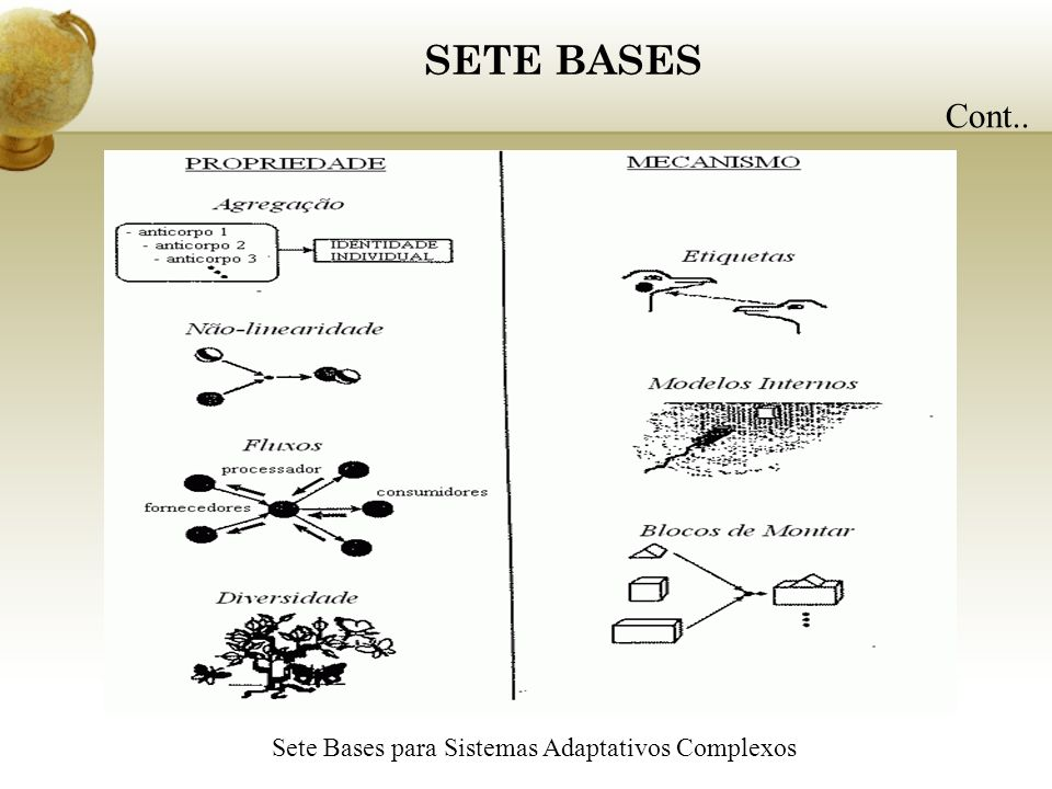 Sete Bases para Sistemas Adaptativos Complexos