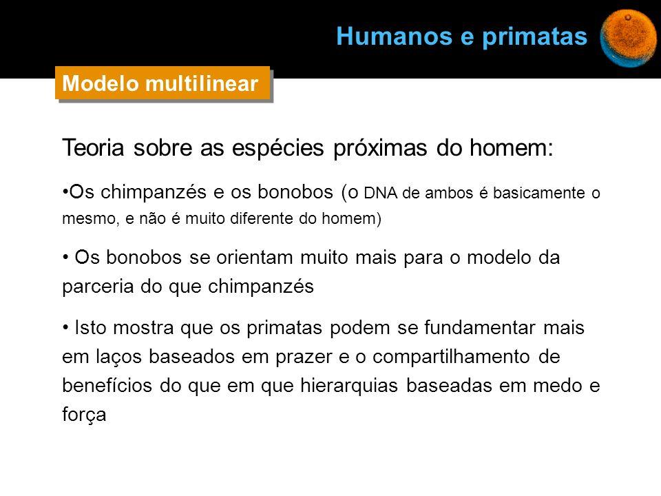 Humanos e primatas Teoria sobre as espécies próximas do homem: