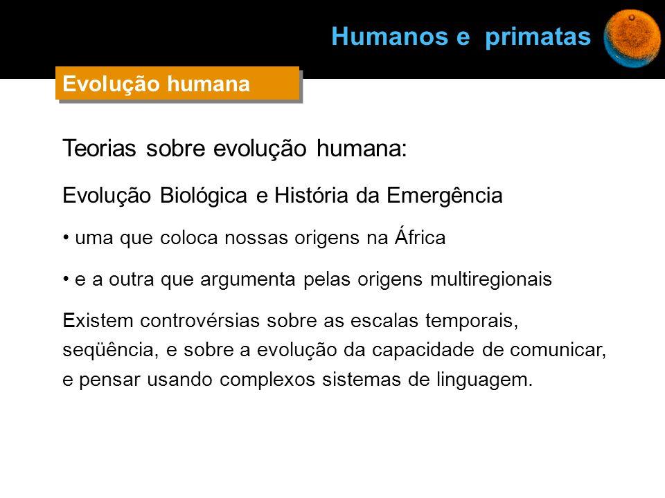 Humanos e primatas Teorias sobre evolução humana: Evolução humana