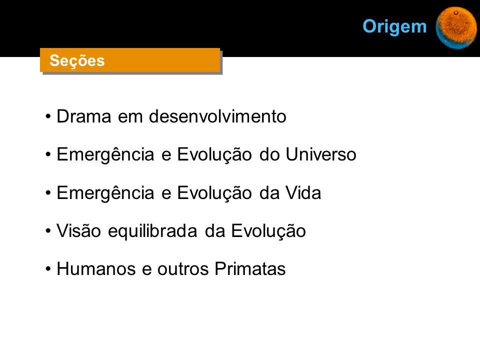 Drama em desenvolvimento Emergência e Evolução do Universo