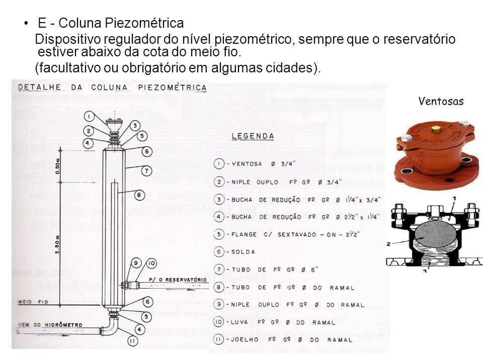 E - Coluna Piezométrica