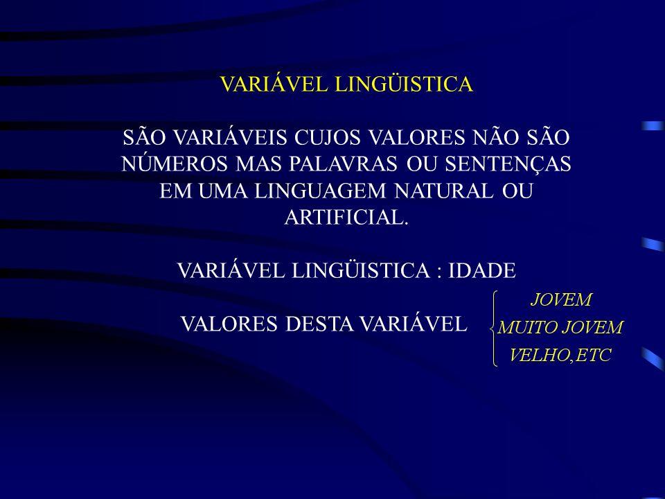 VARIÁVEL LINGÜISTICA : IDADE VALORES DESTA VARIÁVEL