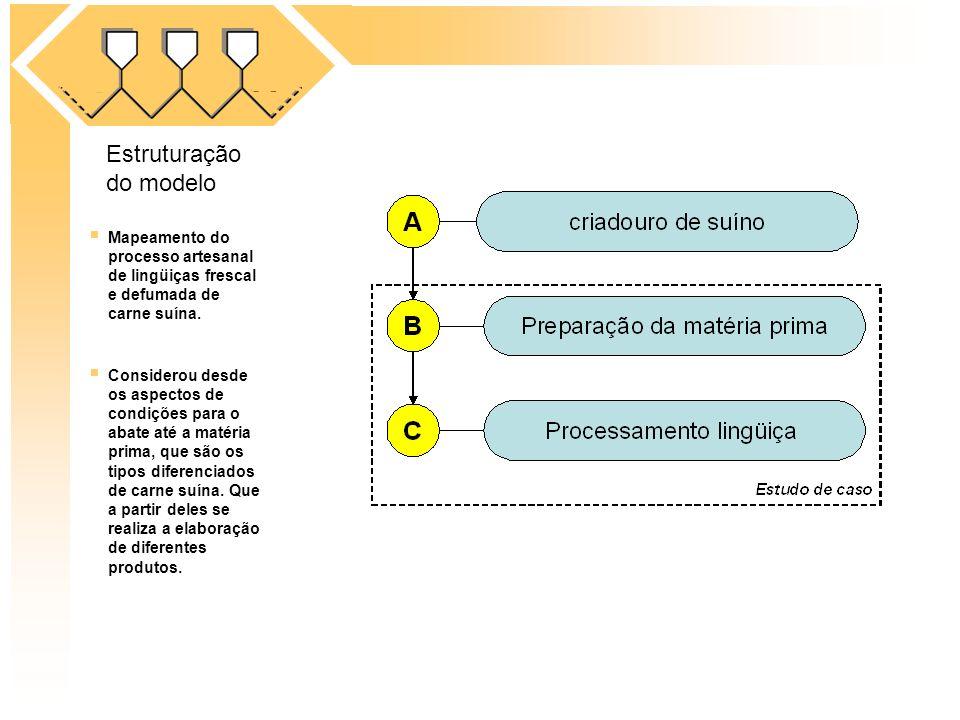 Estruturação do modelo
