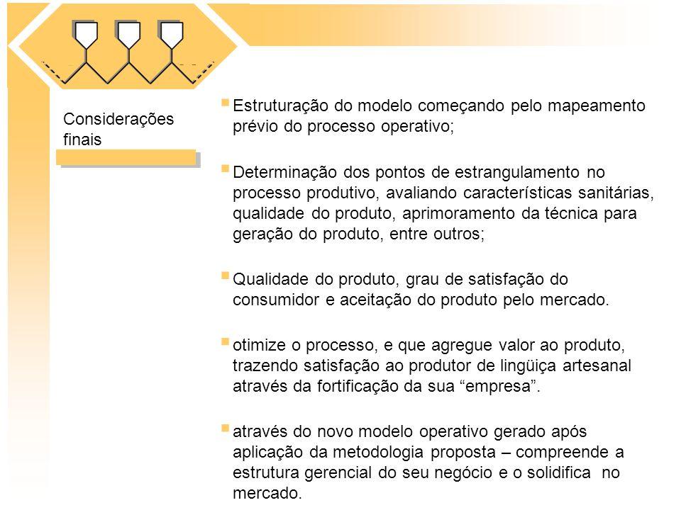 Estruturação do modelo começando pelo mapeamento prévio do processo operativo;