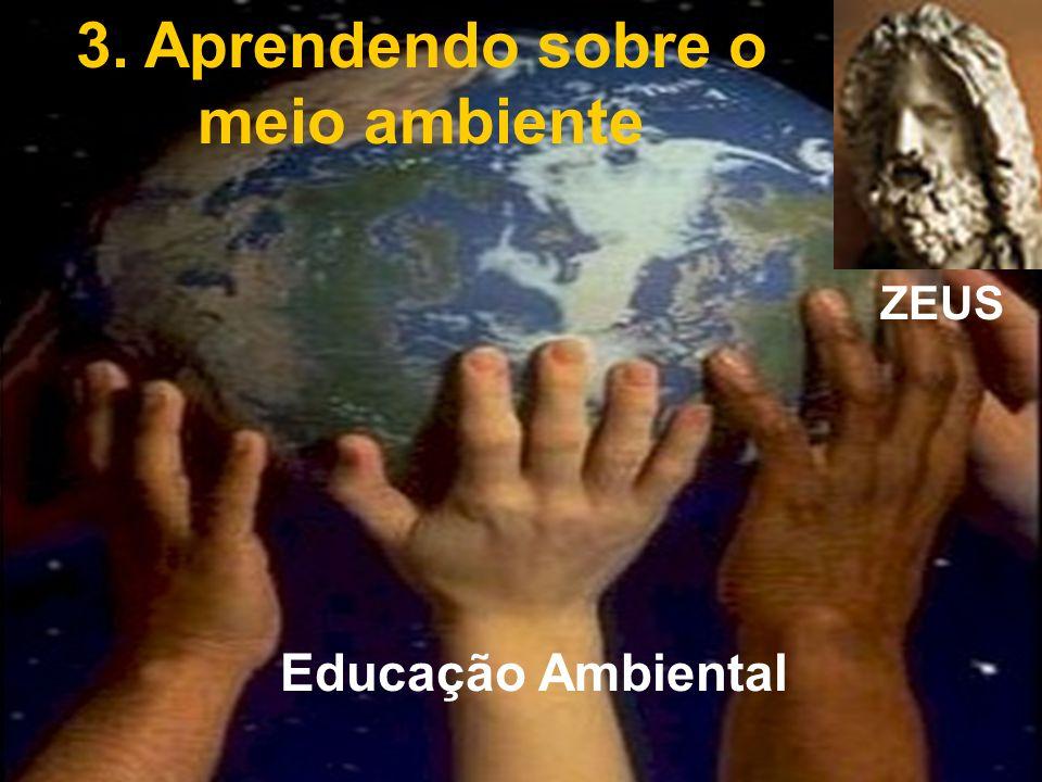 3. Aprendendo sobre o meio ambiente