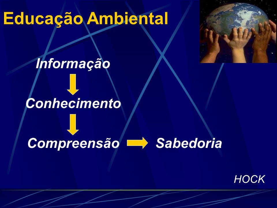 Educação Ambiental Informação Conhecimento Compreensão Sabedoria HOCK
