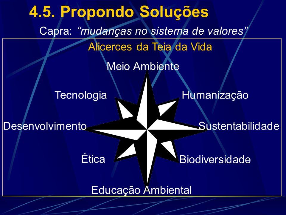 4.5. Propondo Soluções Capra: mudanças no sistema de valores
