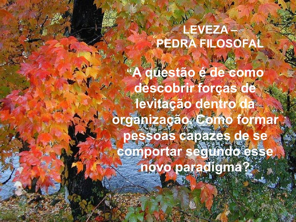 LEVEZA – PEDRA FILOSOFAL.