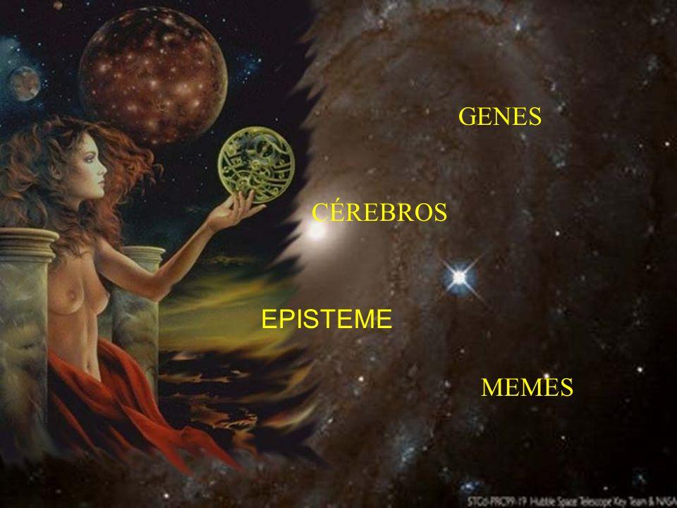 GENES CÉREBROS EPISTEME MEMES