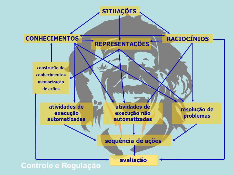 Controle e Regulação SITUAÇÕES CONHECIMENTOS RACIOCÍNIOS