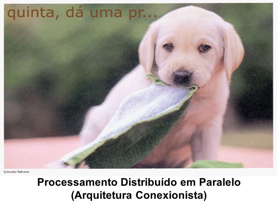Processamento Distribuído em Paralelo (Arquitetura Conexionista)