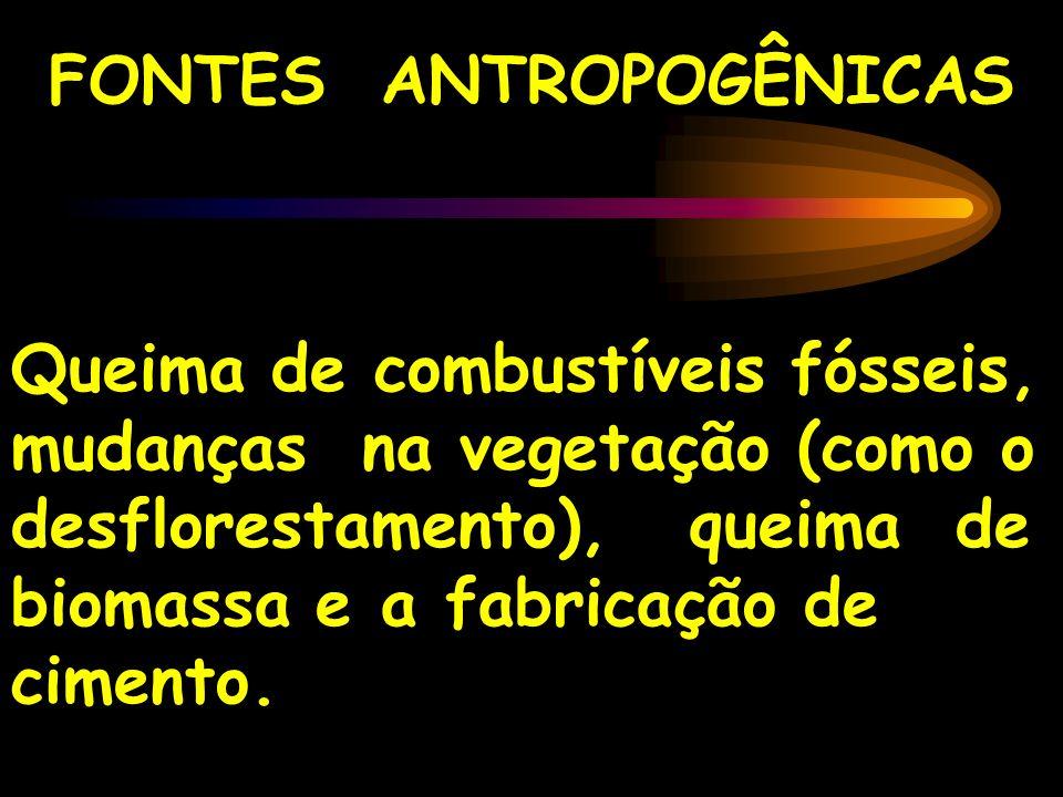 FONTES ANTROPOGÊNICAS
