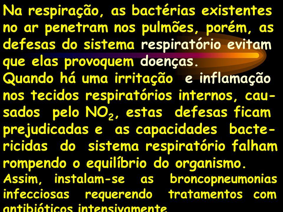 Na respiração, as bactérias existentes no ar penetram nos pulmões, porém, as defesas do sistema respiratório evitam que elas provoquem doenças.