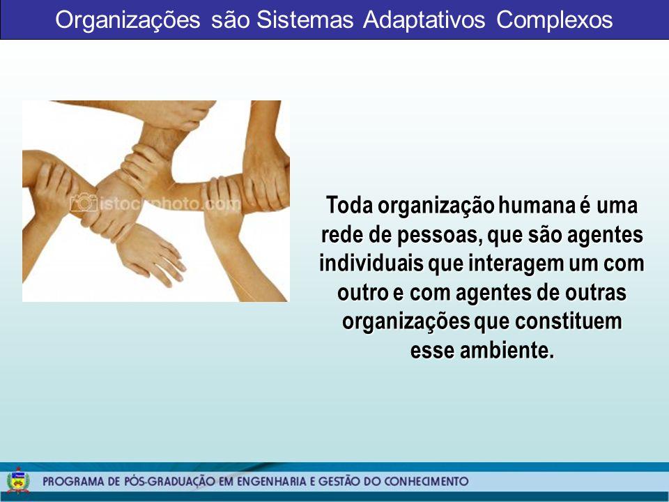 Organizações são Sistemas Adaptativos Complexos