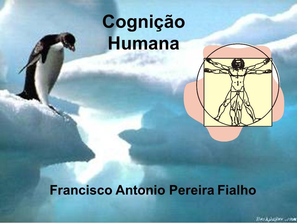 Francisco Antonio Pereira Fialho