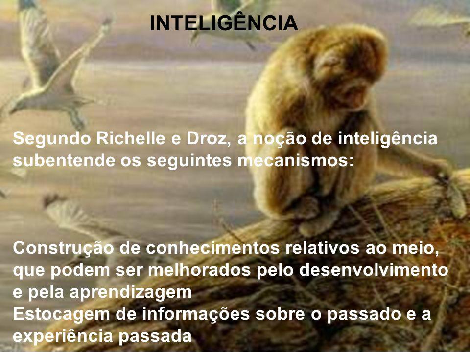 INTELIGÊNCIA Segundo Richelle e Droz, a noção de inteligência subentende os seguintes mecanismos:
