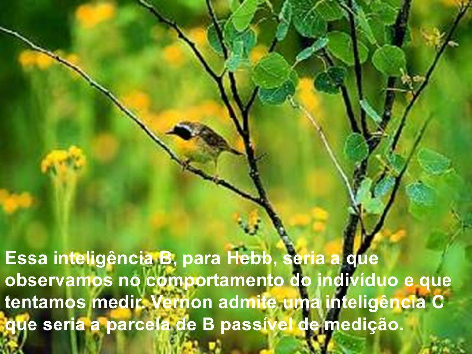 Essa inteligência B, para Hebb, seria a que observamos no comportamento do indivíduo e que tentamos medir.