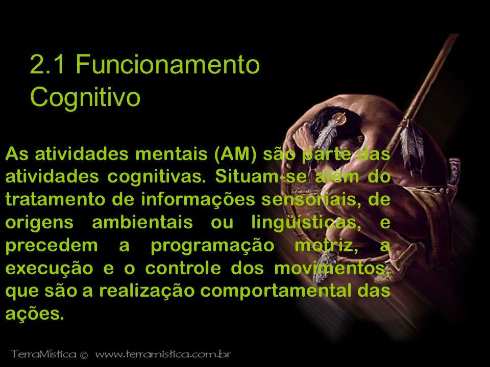 2.1 Funcionamento Cognitivo