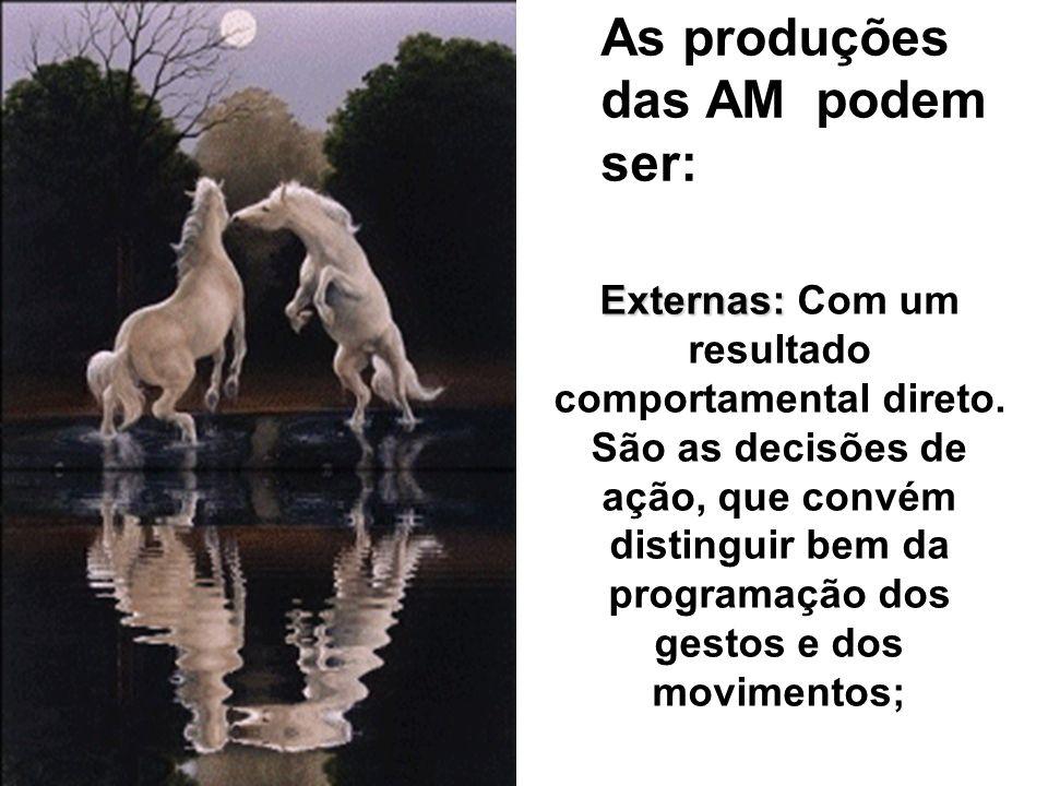 As produções das AM podem ser: