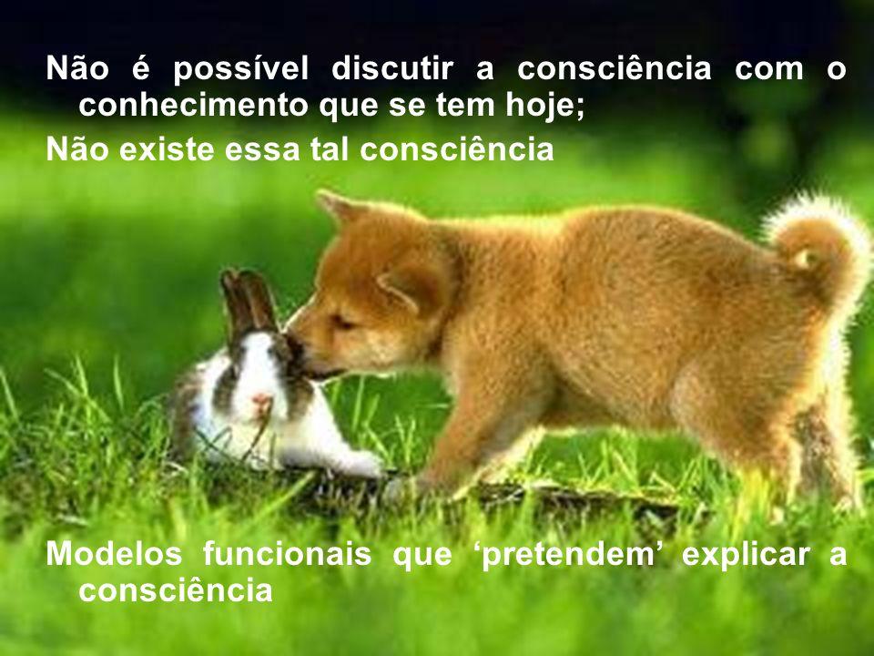 Não é possível discutir a consciência com o conhecimento que se tem hoje;